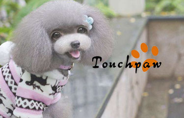 Touchpaw